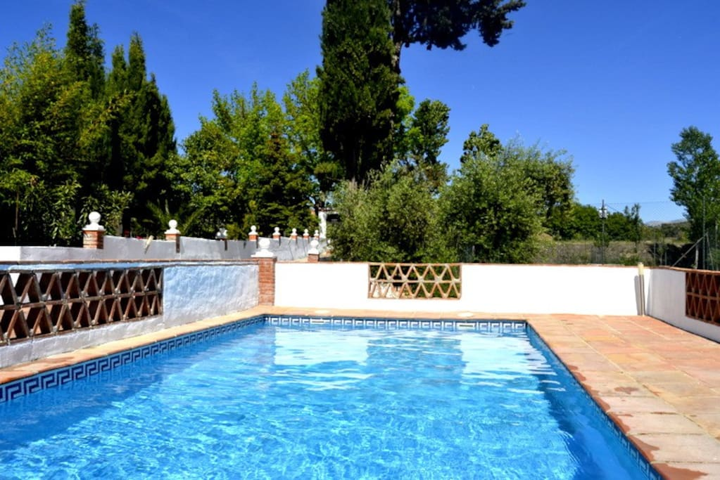 Disfruta de nuestra piscina...