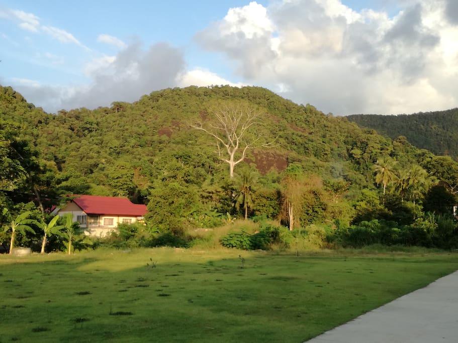 vue sur la montagne et sa jungle