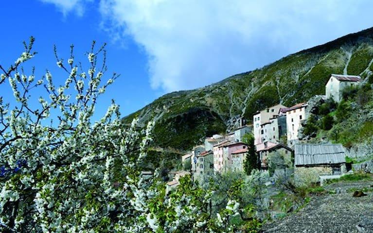 Chez les Fleuristes - Pierlas - House