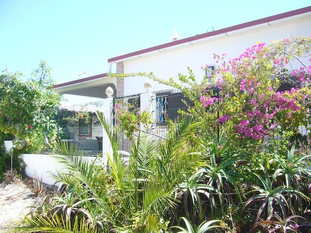 Armona Island,  Portugal  - charming beach house