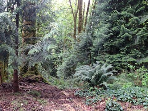 Olympia Westside Studio in Woods