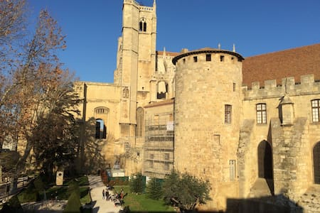 Amazing 3br Narbonne centre Cathedral&Canal views - Narbonne