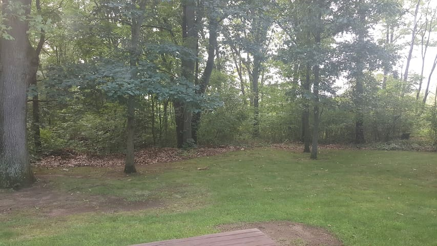 The back yard woods.  Chairs and a patio table on the deck.