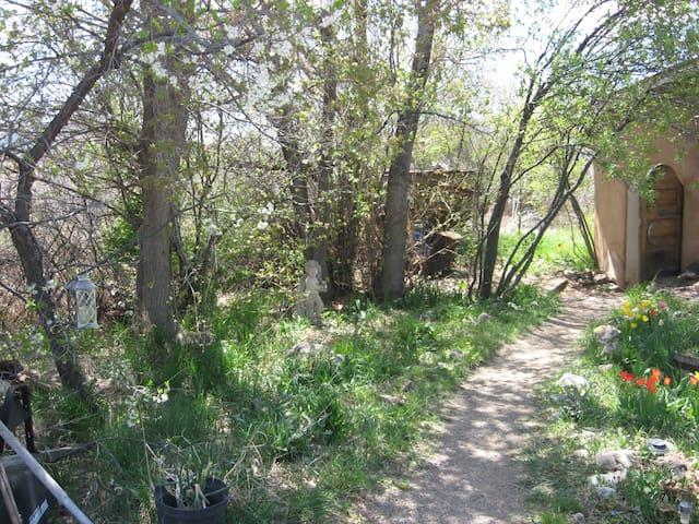 Historical, adobe on river,orchard - Ranchos de Taos - House