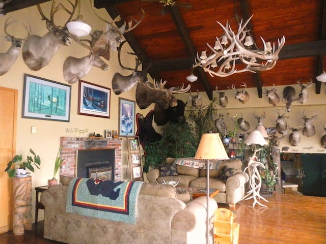 Whitebird Summit Lodge BnB - Grangeville - Penzion (B&B)