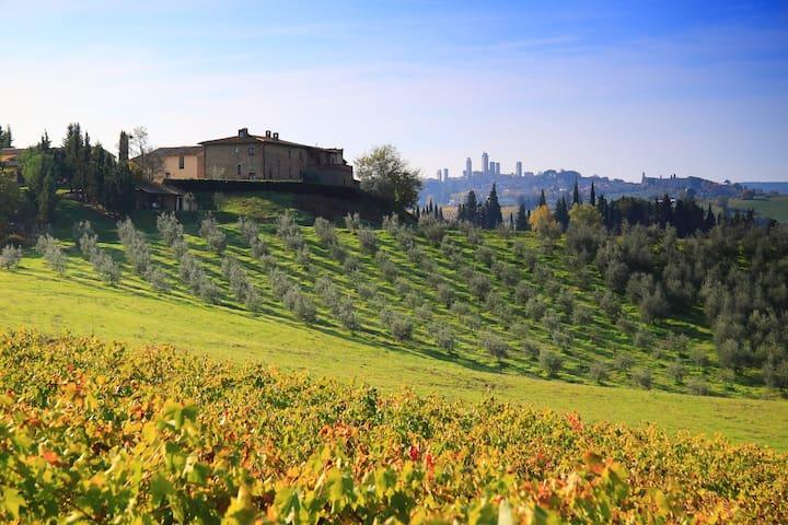 San Gimignano, Montegonfoli SIX - San Gimignano - Apartment