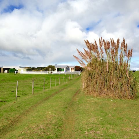 Grazier's Cottage - Farm stay/surf - King Island - House