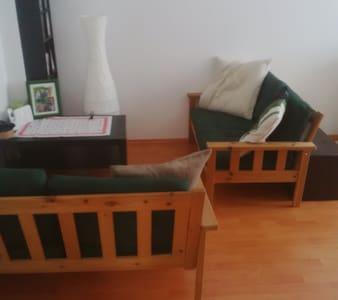 Süße Wohnung in Heidelberg für den Sommer - Heidelberg - Huoneisto