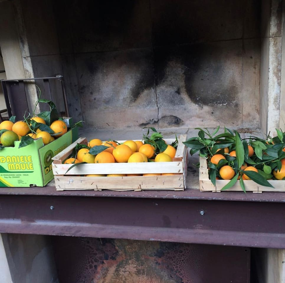 Le arance del giardino