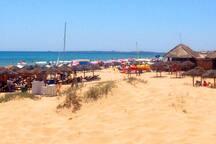 playa carabassi - Carabassi beach