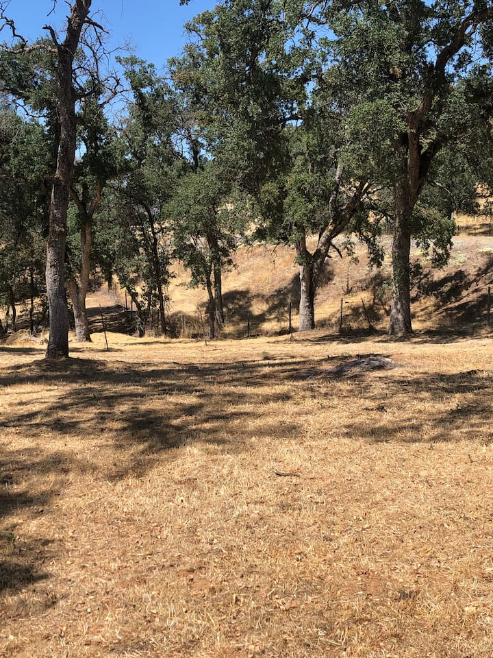 MommaPeggs GetawayTENT/CAMP#2 viaYosemite,Sierras