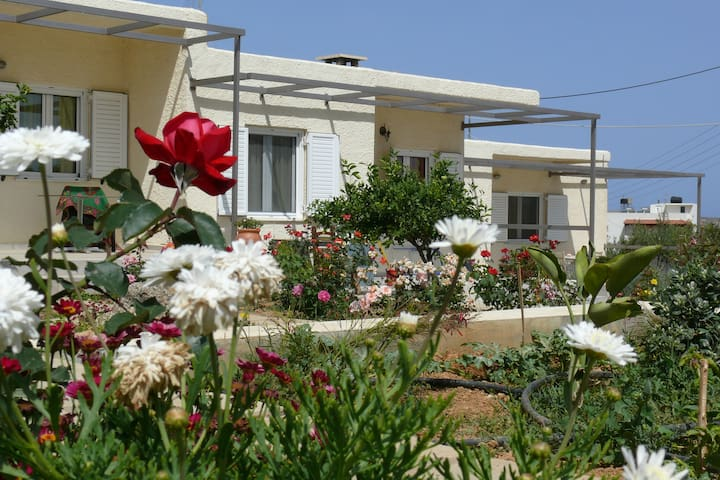 Athos countryside apartment - Tripitos - Casa