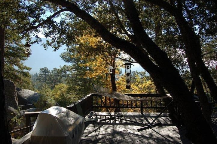 Falcon Rest Lodge, upscale privacy - Idyllwild-Pine Cove - Casa
