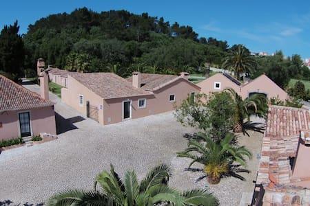 """Cottage """"Palmier"""" - Murtal/ Estoril - 別荘"""