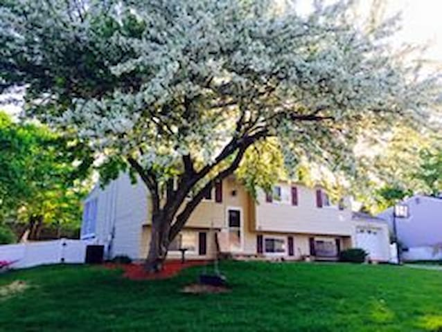 Beautiful single family home - Roxbury Township - Dom