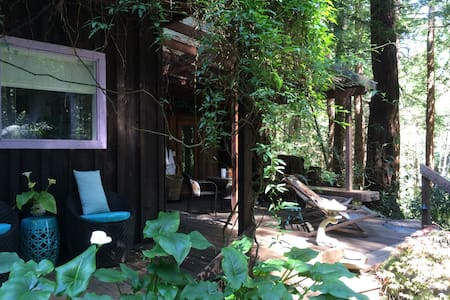 Rustic cottage in Sonoma redwoods - Occidental - Cabin - 1