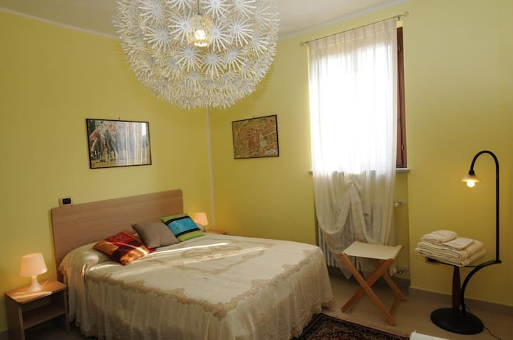 Palio Room in Asti in Monferrato