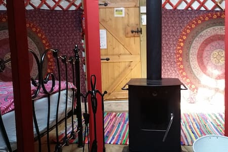 Wych Elm Glamping, Sycamore Yurt