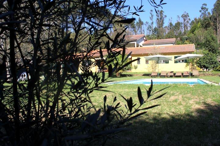 CASA DA NOGUEIRA  countryside house - Orbacem  - Huis