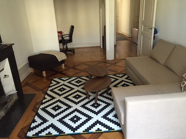 Great Aprt in the heart of Geneva - Genève - Apartment