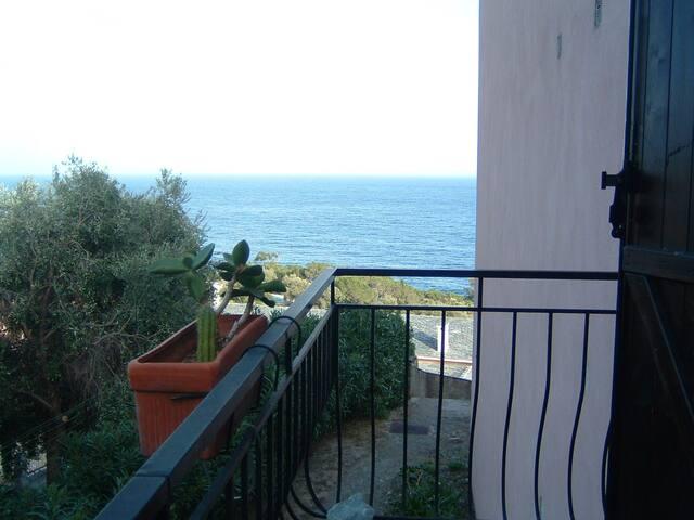 charmant studio meublé - Santa-Maria-di-Lota - Apartment