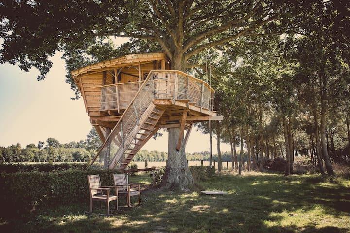 La Chouette Cabane - Hulotte - pommerieux - Zomerhuis/Cottage