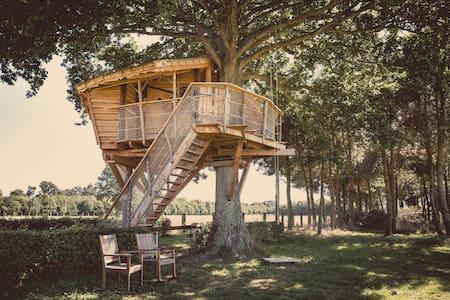 La Chouette Cabane - Hulotte - pommerieux