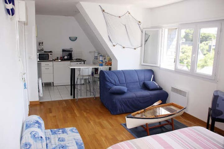 JOLI STUDIO MARIN - Carnac - Appartement