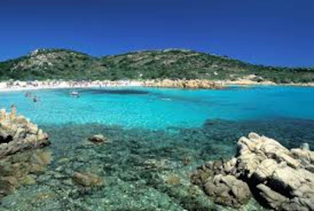 vi piace il mare di baia sardinia?