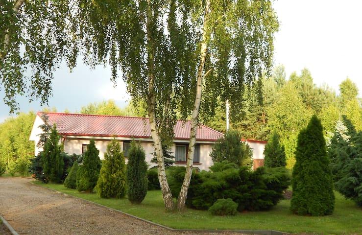 Leśna Polana Białkowo/Golub-Dobrzyń - Golub-Dobrzyń - House
