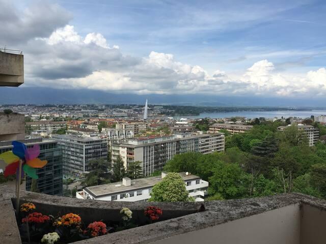 Best view room w/private bathroom - Ženeva - Byt