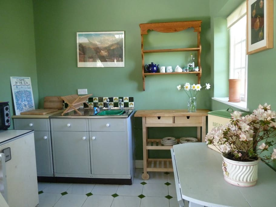 Functional kitchen area with fridge, microwave, cooker and sink
