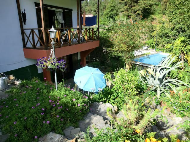 Rural Apartment with Pool - Icod de los vinos - Leilighet
