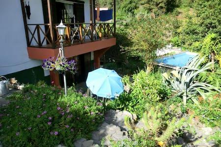 Rural Apartment with Pool - Icod de los vinos - 公寓
