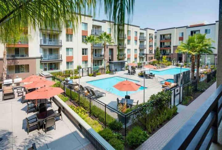 1B/1B Luxury Apartment in Sunnyvale