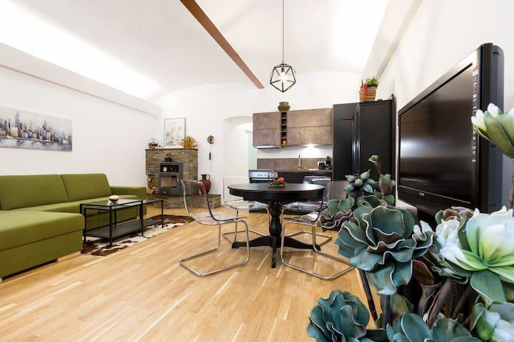 Garden Apartment in Centre Vienna
