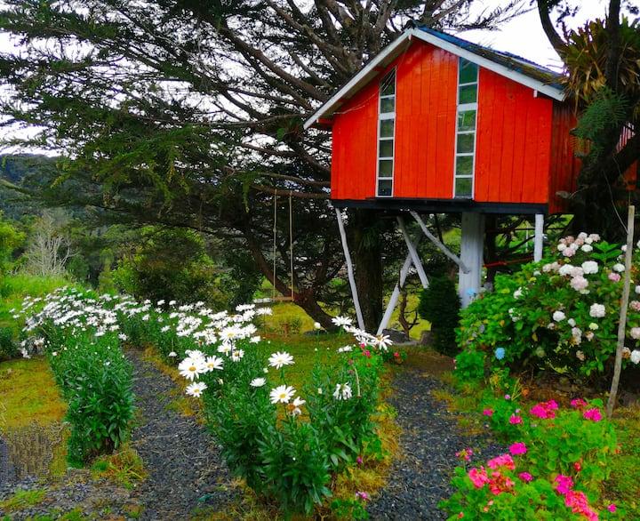Casa del Árbol Laguna de la Cocha