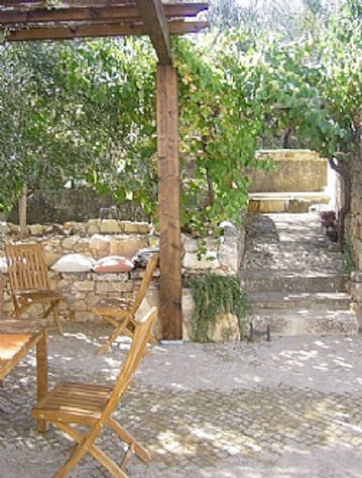 The outside patio , comfortably sits 12 people and has a BBQ and brick oven