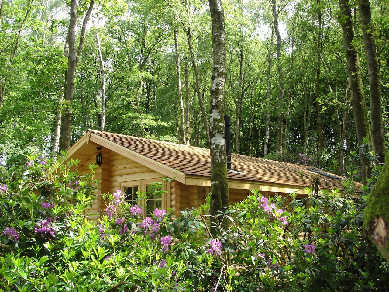 Secluded Woodland Log Cabins