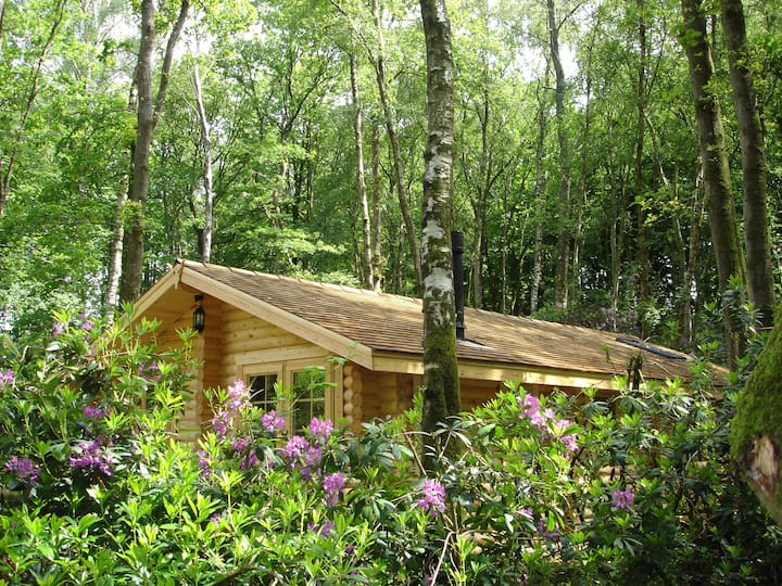 Woodpecker Lodge - Log Cabin with Private Hot Tub