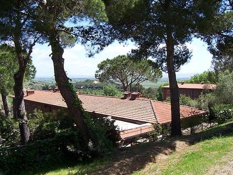 Belvedere Maremmano