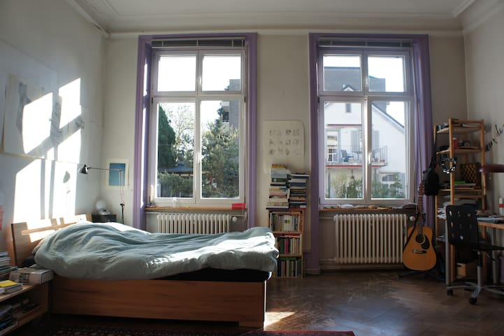 Quiet & Spacious Room in City House - Basel - House