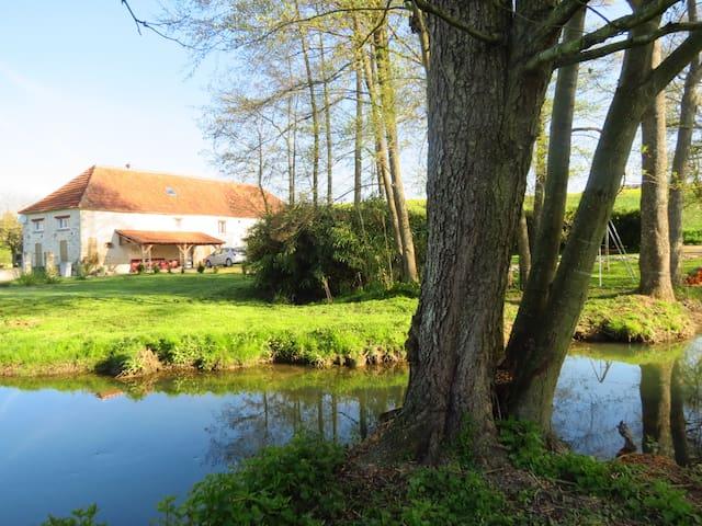 Gite DESIGN & NATURE 8 pers. Loiret - Saint-Hilaire-les-Andrésis - บ้าน