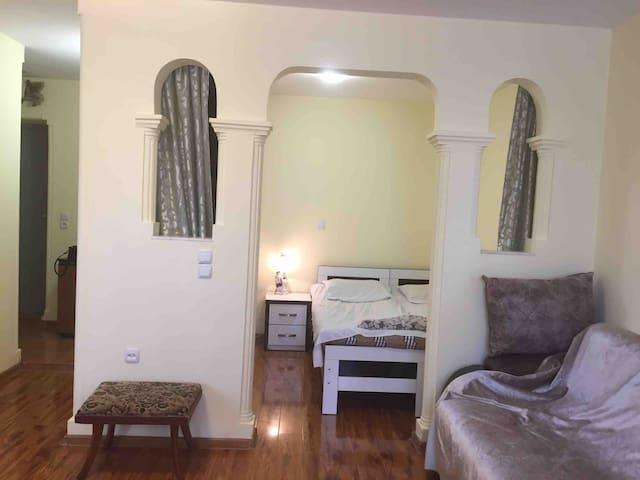 comfortable-apartment-tbilis