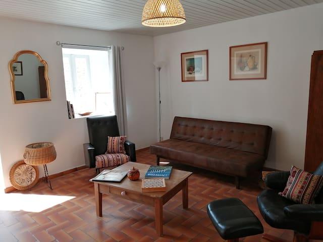 Salon télé canapé lit en rez de chaussée accès cour intérieure