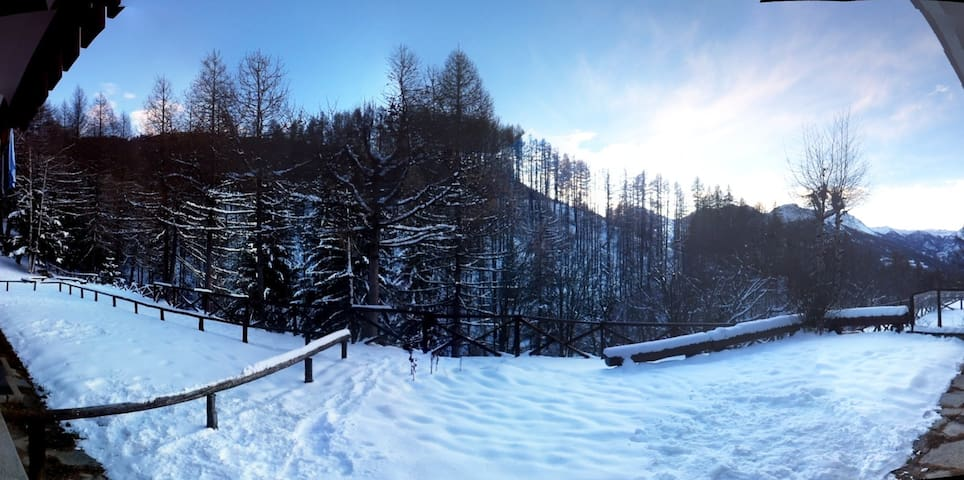 Giardino e vista sulla pineta in inverno/pinewood view in the winter time