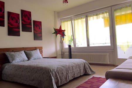 Cozy Studio, 15min from City Center - Thônex