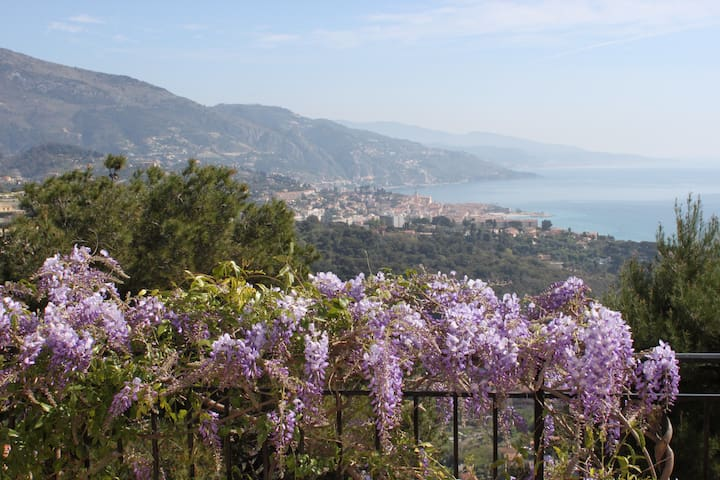 Charming B&B on the French Riviera! - Roquebrune-Cap-Martin - Bed & Breakfast