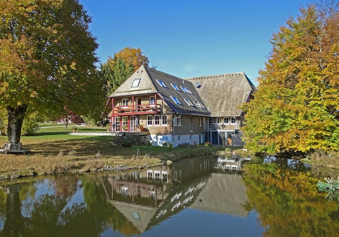 Black Forest Apartment in a quiet location - Aichhalden - Leilighet
