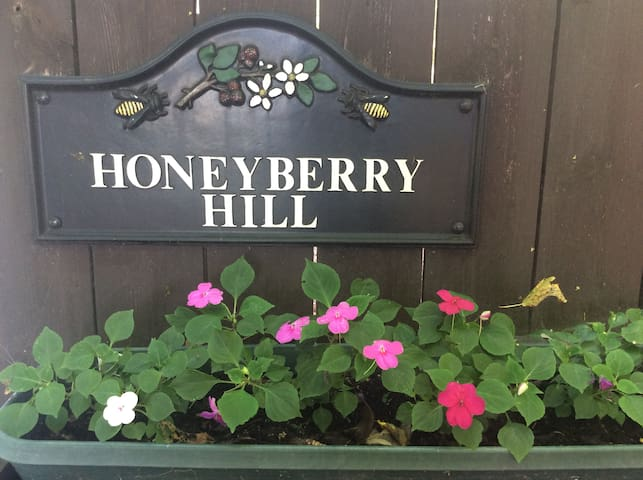 "Honeyberry Hill ""Southern Exposure"" - Ithaca - Bed & Breakfast"